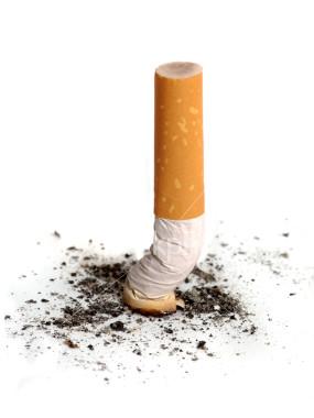 Cigarrette Butt 107