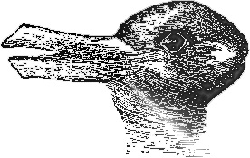 duck rabbit illusion optical bunny gestalt illusions psychology bird worlds pato hare left right