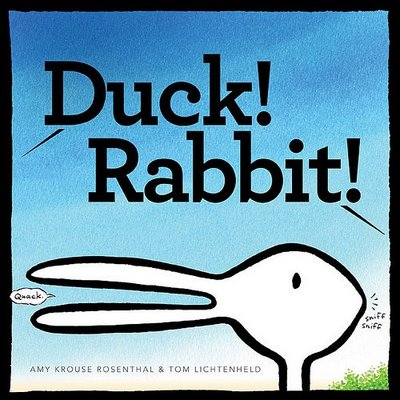duck rabbit illusion amy worlds optical perspective illusions krouse rosenthal books animal